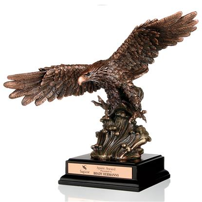 Picture of Soaring Heights Award