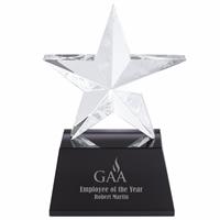Picture of Iceberg Star Award